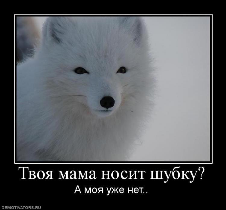 Твоя мама носит шубку?